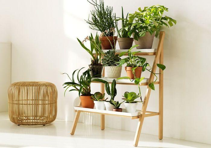 Стойка для домашних растений в горшках
